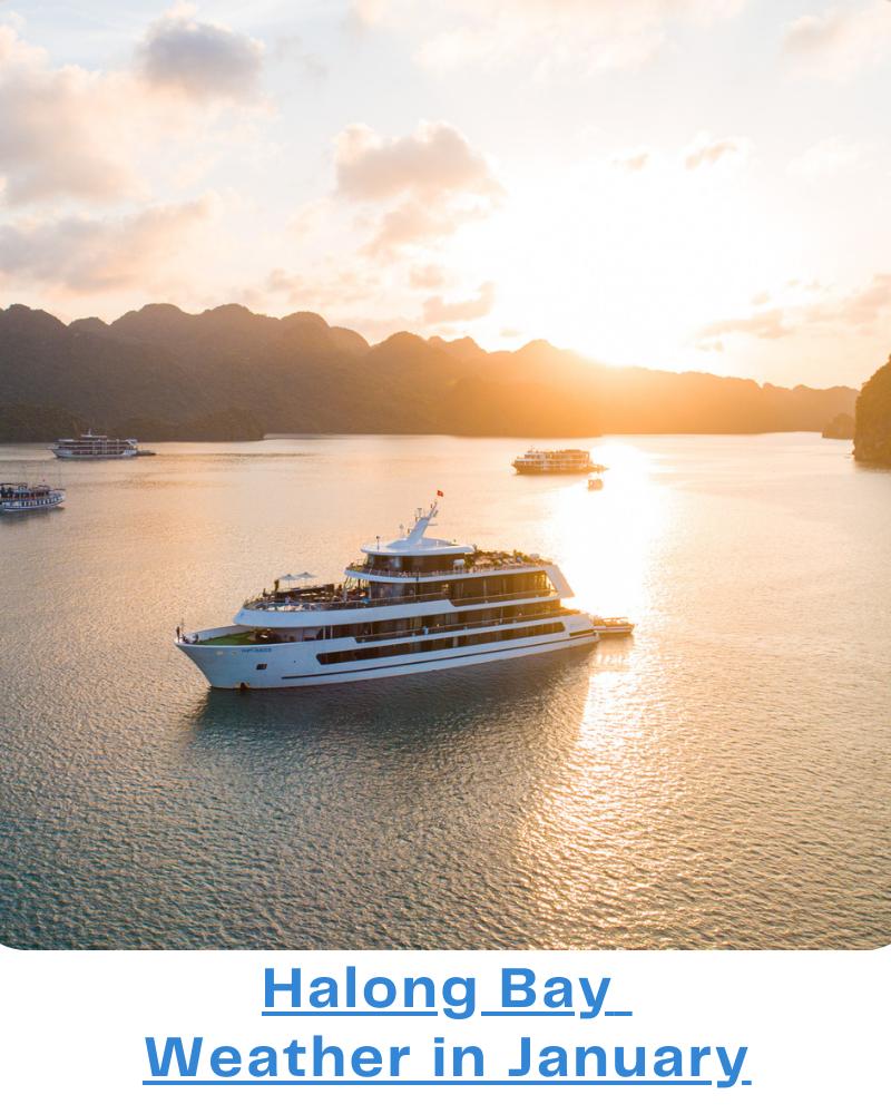 Halong Bay weather January
