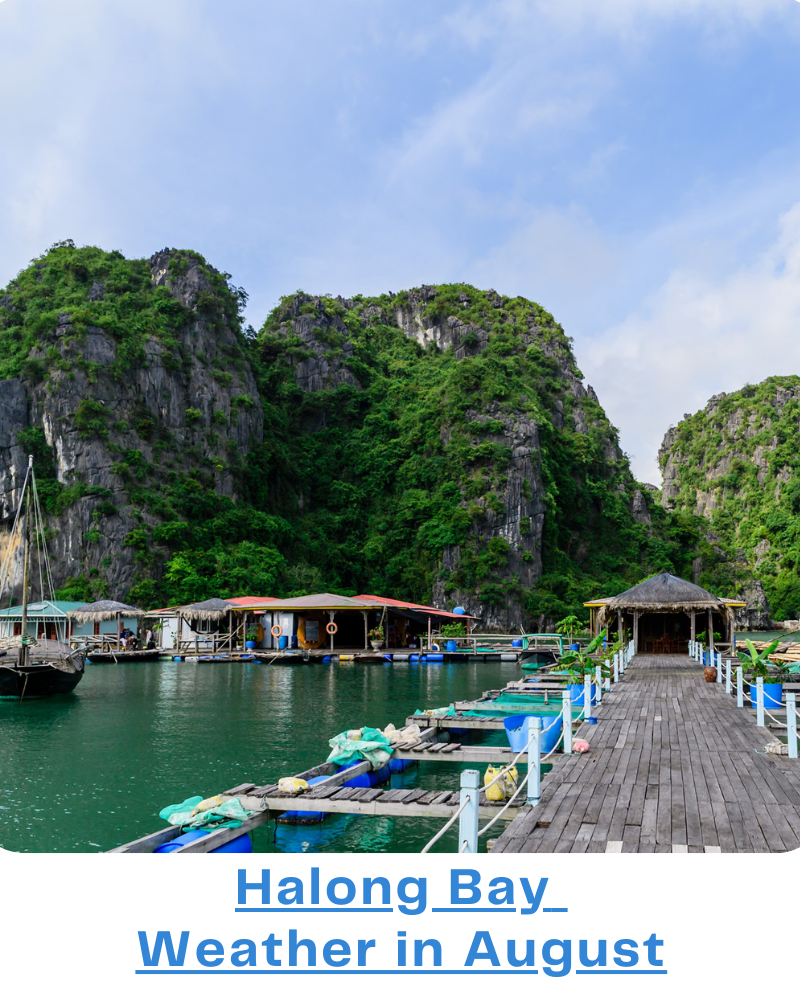 Halong Bay weather August