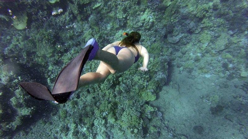 Snorkelling in Lan Ha Bay