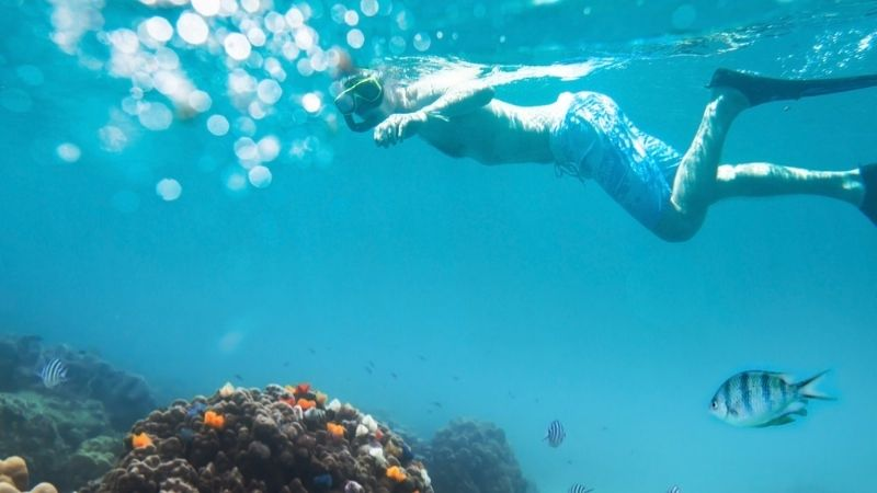 Summer is best time to do snorkelling in Halong