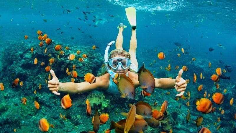 Beautiful snorkeling and diving in Halong
