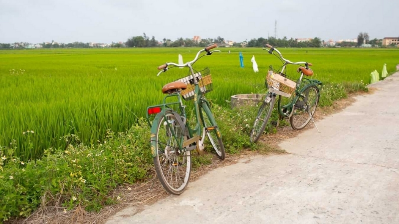 Take a free biking experience throughout the Hoi An's outskirt area