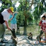 Monkey Island – Doc Let Beach Full day