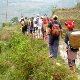 Sapa Trekking and Halong Bay by Bus 5 days