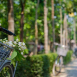 Exploring Thuy Bieu Eco-Village on Two Wheels