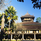 White Temple and Mae Fah Luang Art & Culture Park half day