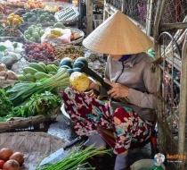 Dam Market Fruit Vegatable Stall