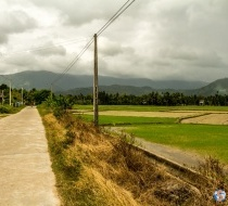 Through Villages And Green Fields.