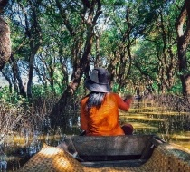 Visit The Flooded Forests Of Tonle Sap