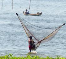 Ayarwaddy Fishing