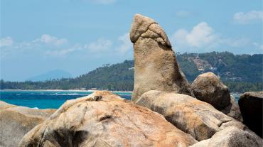 Discover Samui Island Half Day Tour