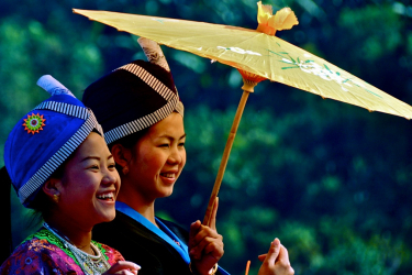 Akha, Yao Hilltribe & Golden Triangle Full Day