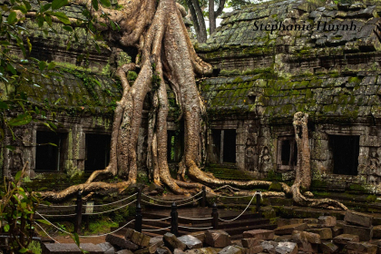 Authenticity of Angkor Discover 5 days