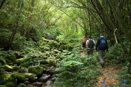 Sihanoukville Remote Jungle Trekking Full day