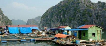 Cua Van Village