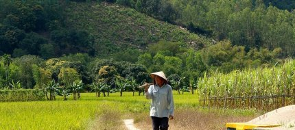 Countryside In Nha Trang