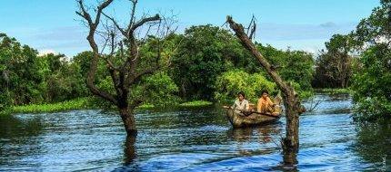 Locals Navigate Through The Mangroves In Kampong Phluk Village