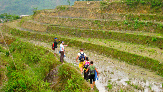 Sapa Trekking 2 days - Homestay - No 2 Trekking