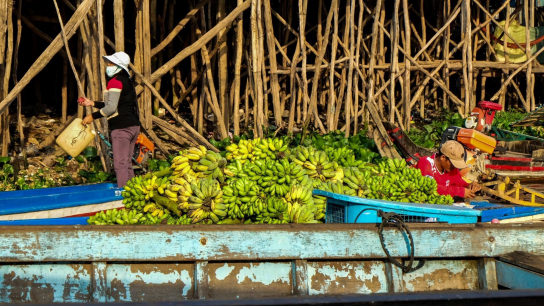 Mekong Mighty Life Escape to Cambodia 3 days