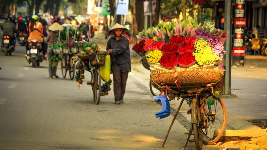Highlights of Vietnam 12 days - No 16 Family Holidays