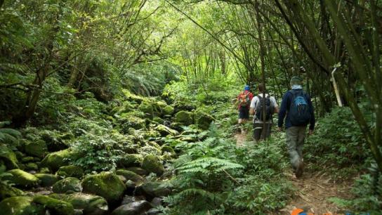 Sihanoukville Remote Jungle Trekking Full day - No 5