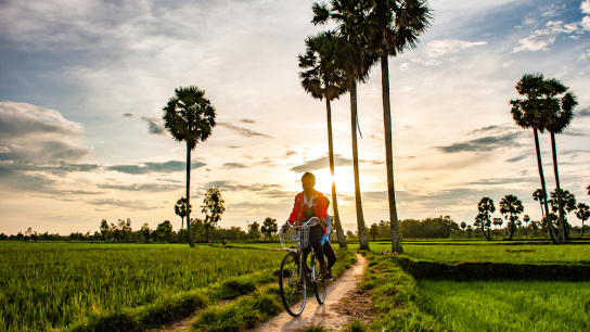 Classic Vietnam Tours for Family 12 days - No 3 Family Holidays