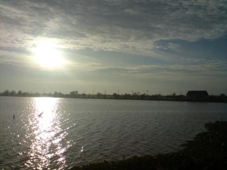 Mekong River Cycling Full day