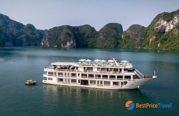 Alisa Cruise Overviews 2