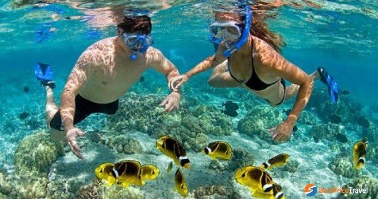 Snorkeling in Hon Mun island